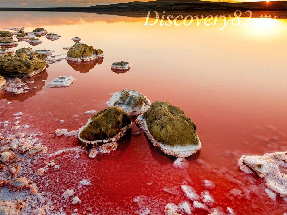 Розовое озеро Крым