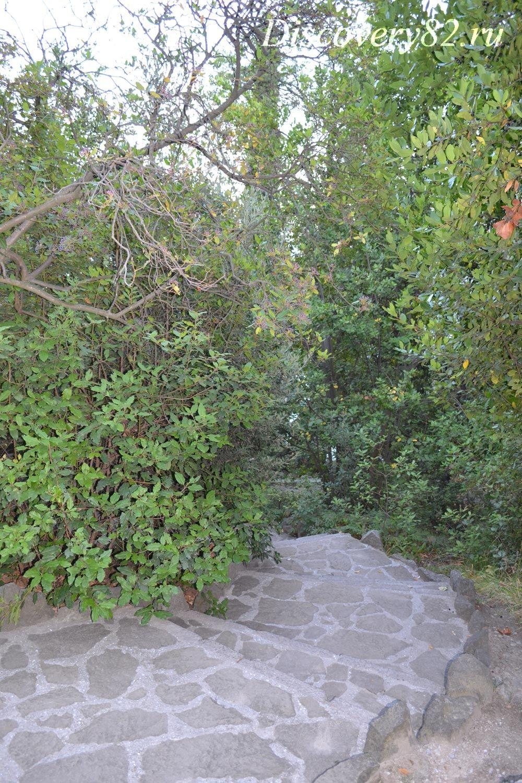 Лестница в Нижний парк
