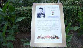 Миниатюра к статье Аллея Славы в Ливадийском дворце фото